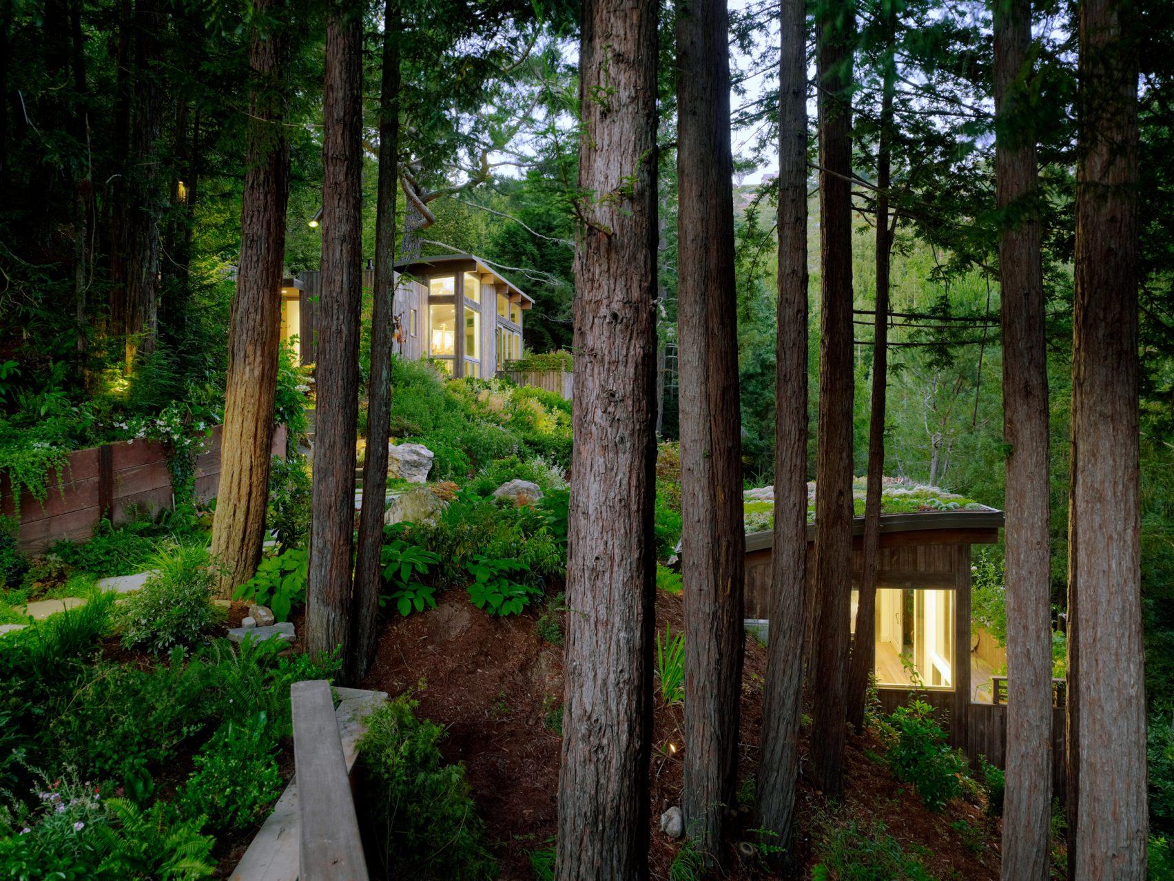 Feldman-Architecture-Mill Valley Cabins-photo by Joe Fletcher 02