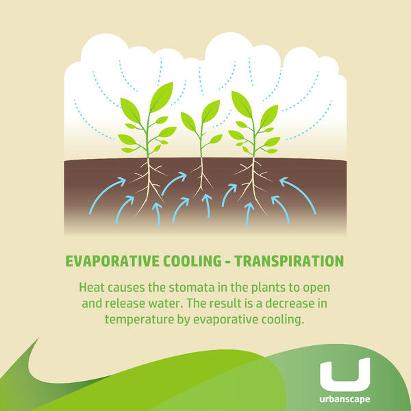 Grafika_Evaporative cooling