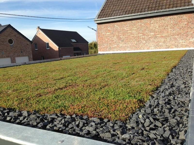 Roof_Autumn_S.jpg