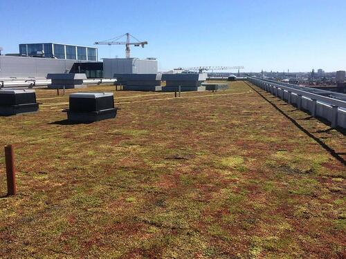 Urbanscape® Green Roof