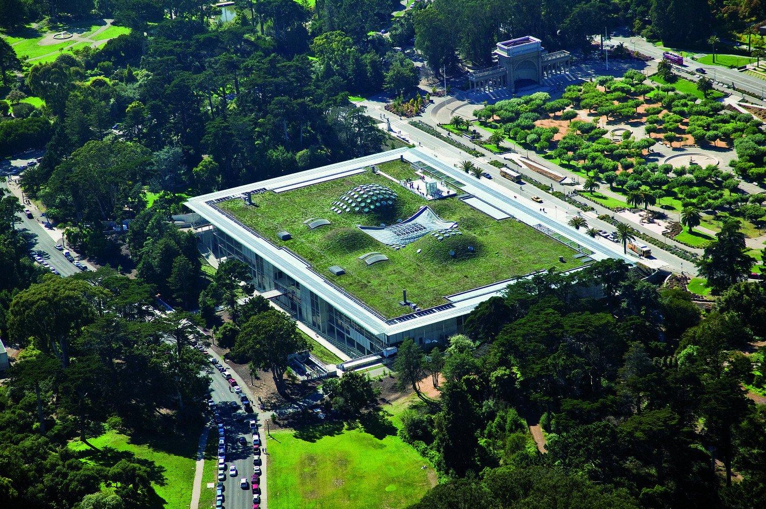 Renzo Piano_California Academy of Sciences_02_photo by Tom Fox