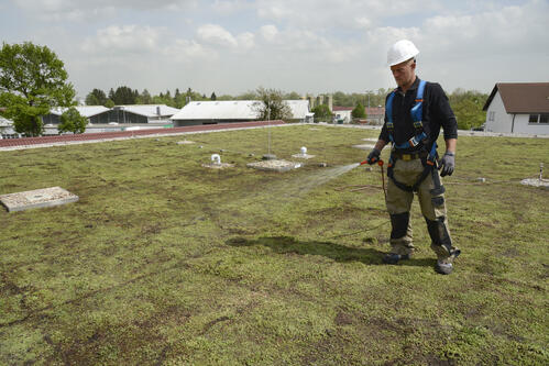 Urbanscape® Green Roof  watering